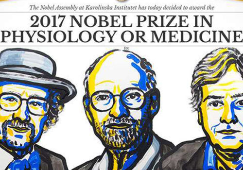 The Nobel Laureates in Medicine 2017