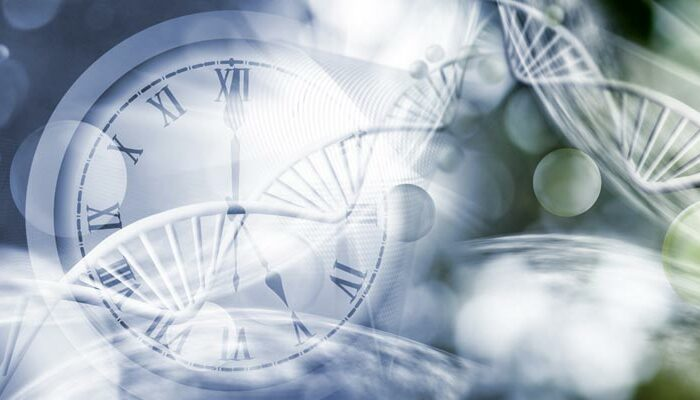 Nobel discovery: Body clock studies – more than just jet lag