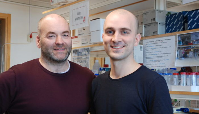 New disease model to facilitate development of ALS and MS drugs