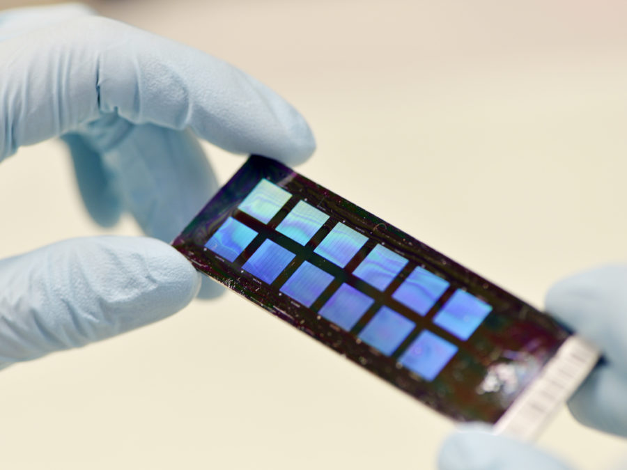 Genotyping chip