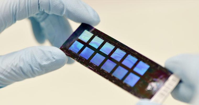 Genotyping chip