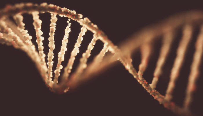 New genetic marker could help diagnose prostate cancer