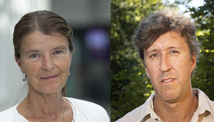 10 million SEK awarded to research on myelodysplastic syndrome