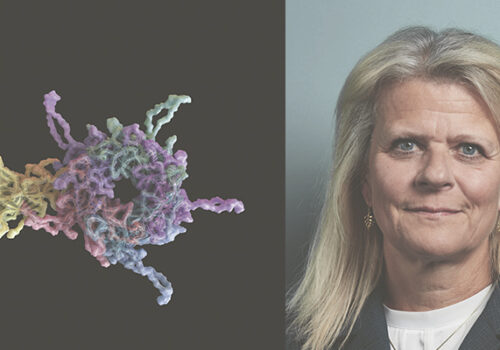Charlotte Aagaard and HPV virus