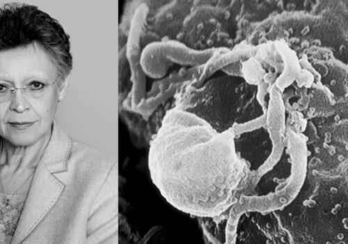 Françoise Barré-Sinoussi and HIV virus