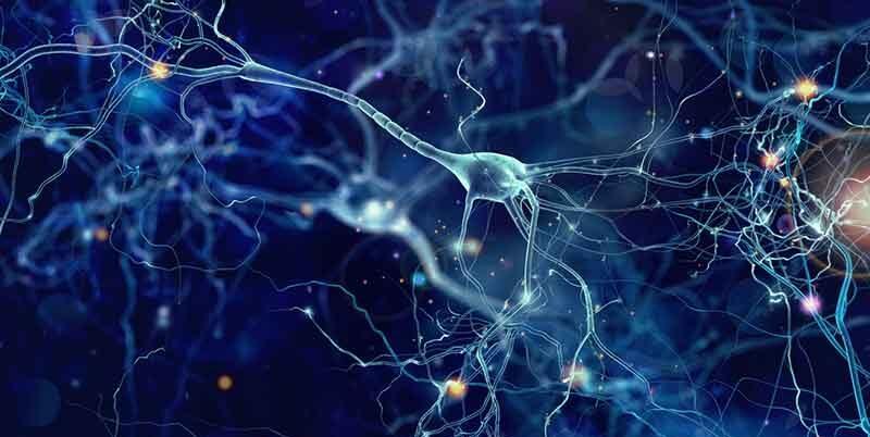 Novo Nordisk to enter phase 3 development in Alzheimer's disease