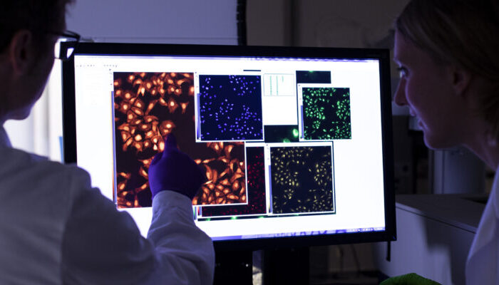 Swedish scientists have developed a method for discovery of antiviral drugs