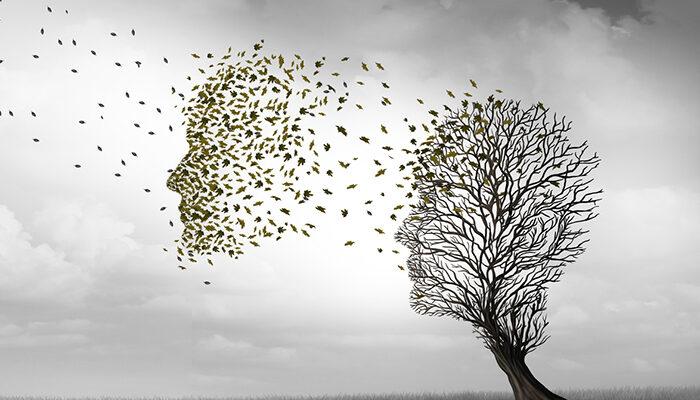 15 biomarkers for diseases predisposing to dementia identified